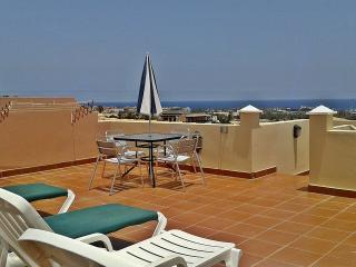 Apartments Cardon large Roof Terraces & Sea Views, Caleta de Fuste