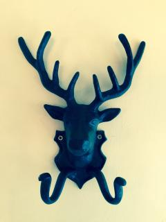 Our favourite coat hook!