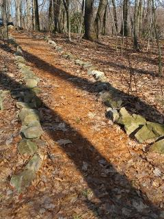 Stone lined pathways