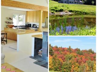 Mountain Retreat Close to Killington & Okemo, Plymouth
