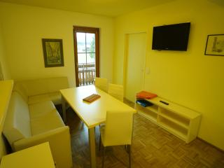 Apartment Kronalpe