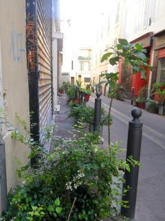vue de la rue semi-piétonne et fleurie