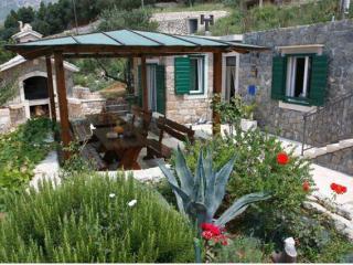 Villa Bellaviasta**** with private pool and garden