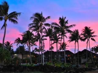 Low price beachfront, 2 br, 2 bath. Full kitchen., Kapaa