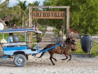 Gili Eco 2 Bedroom Luxury Villa with Pool on Beach