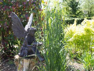 Curlew Cottage Garden