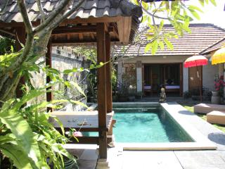 Oasis villa - only $75 in july, Sanur