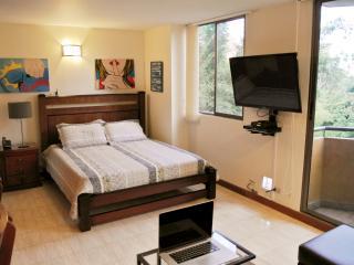 Beautiful Studio Apartment in El Poblado, Medellín