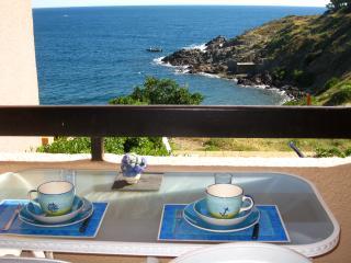 T2, pieds dans l'eau et vue mer, Collioure