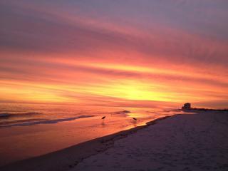 Available ! 3 br-Santa Rosa Towers-Pensacola Beach