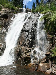 Stephensons Falls, Marysville.