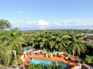 Casa Del Palm, Montego Bay, The Woodlands