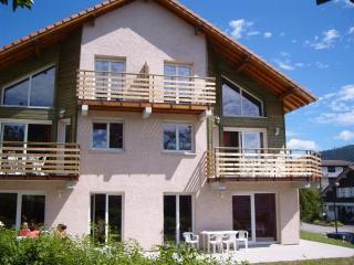 80 m² en duplex - Chalet des Moulins à Gérardmer, Gerardmer