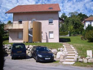 Appt duplex 80 m2 - Chalet des Moulins a Gerardmer proche lac et centre ville