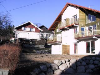 50 m² rez-de-jardin Chalet des Moulins à Gérardmer