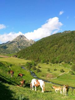 Valle de Incles, para visitar en verano