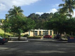 Exclusive Neighborhood, 24/7 security, sleeps 8, San Juan