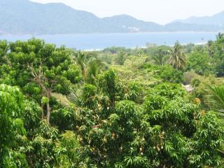 View of beach from terrace of house(Vista a playa de Oro de terrazza en casa)