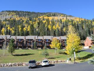 Mountain Condo 155  awaits your stay, Durango Mountain
