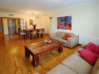 Spacious apt.with views of Science museum Valencia, Valence