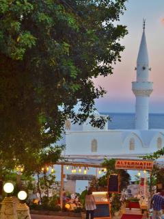 The historic town Mosque at sunset
