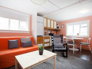 Cosy and quiet studio apartment downtown, Reikiavik