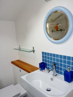 Downstairs bathroom with shower in bath