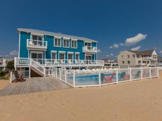 Blue Dolphin ~ RA145082, Virginia Beach