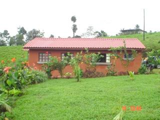 Villa Guadalupe, La Fortuna de San Carlos