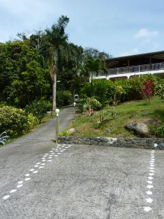 Votre place de parking privée en bas de la maison, entre les petites tortues!
