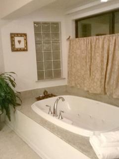 Master bathroom with 2 person garden jacuzzi tub