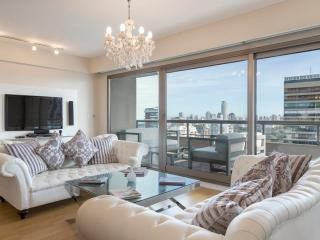 Superb 3 Bedroom Apartment in Palermo Nuevo, Buenos Aires