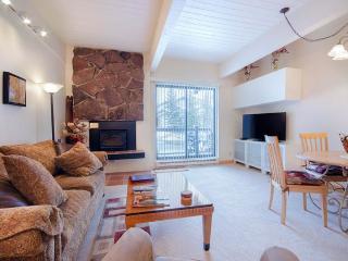 Storm Meadows Club C Condominiums - CC312, Steamboat Springs
