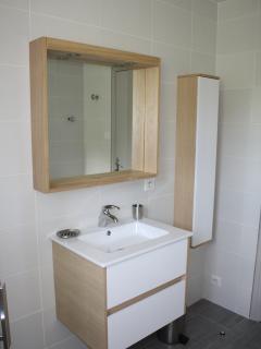 Salle d'eau (le lavabos)
