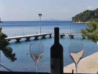Seaside apartment on promenade ,3 bedrooms, Cavtat