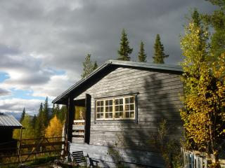 Il Borealis Wilderness Lodge, lusso nel cuore della natura incontaminata. LUXURY IN THE WILDS