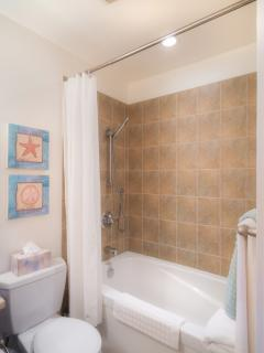 large bathtub & designer shower fittings