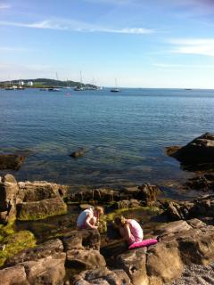 Rockpooling outside Millport Beach Apartment, Crichton Street, Millport
