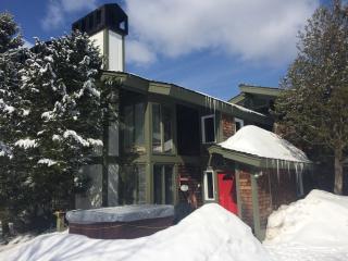 Cozy Mtnside Jay Peak Golf & Ski Townhome Condo