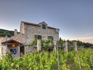 Villa Bon Vivant Morpheus Vineyard, Vrbanj