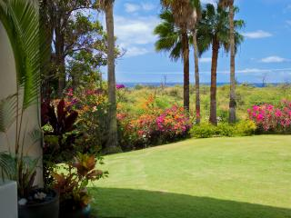 Keawakapu Ocean View, renovated green 2BR 2B