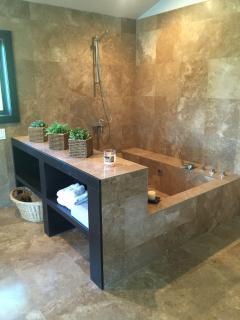 Master bedroom marble roman tube shower