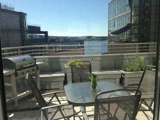 3-bedroom luxury apartment at Aker Brygge