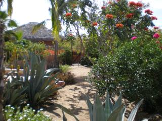 The garden setting