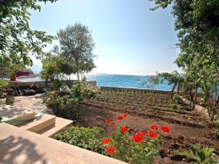 PRIVATE BEACH is YOURS / Bodrum, Bodrum City