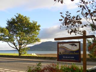 The Oystercatcher, Rostrevor