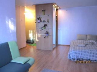 Modern apartment in old city . Cheaply., Minsk