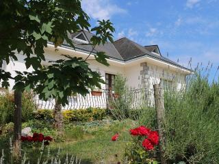 A la découverte de Nantes, grande maison familiale, Thouare-sur-Loire