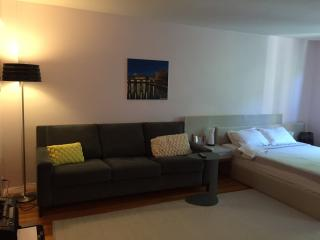 Spacious Studio newly renovated, Italian Furniture, New York City