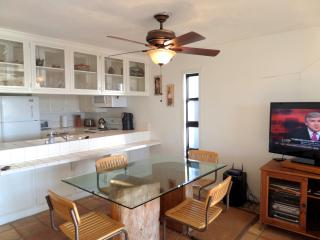 Dining Room area and Kitchen, flat screen panel cable tv and wifi too!